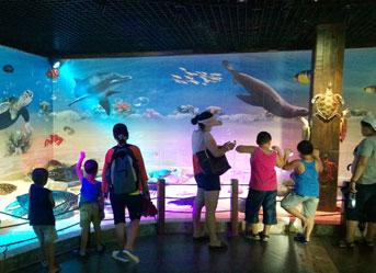 海南陵水分界洲岛海洋馆暑期备受孩子青睐