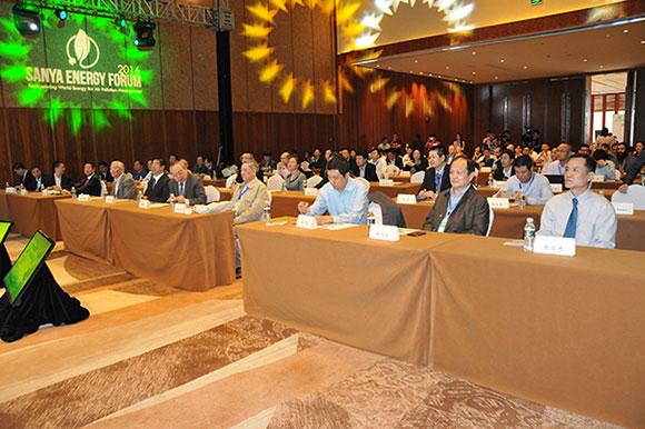 2016调整能源结构治理大气污染国际研讨会开幕