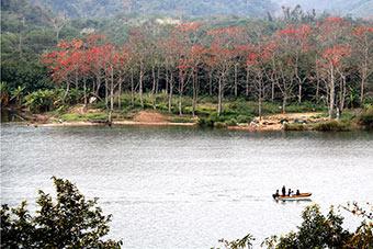 林東:昌江全面吹響全域旅遊集結號