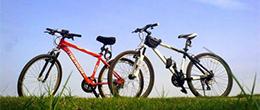 專家提醒:一天騎行最好別超4小時