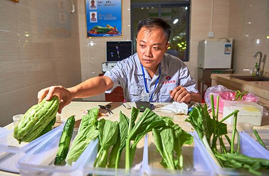 海口:改造小菜場 造福大民生
