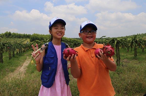 直播回放:新華網小記者走進儋州學習生態農業