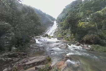 尋找海南熱帶雨林中的避暑勝地
