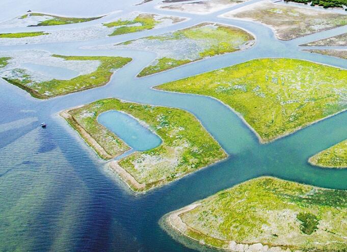 陵水:守住生態底線 做足綠色文章