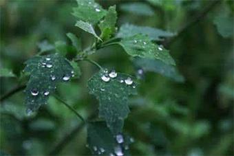瓊島中部和北部21日局地有小陣雨