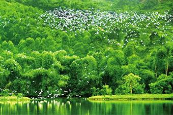 《人民日報》頭版點讚海南省生態文明建設