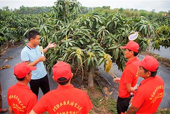 陵水办新型职业农民培训班 学员赴基地实操学习