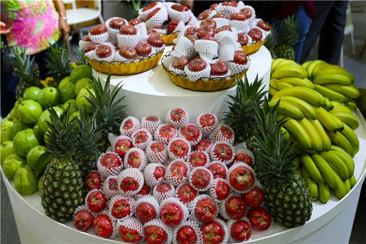 海南(屯昌)农博会:琳琅满目的热带水果引人驻足