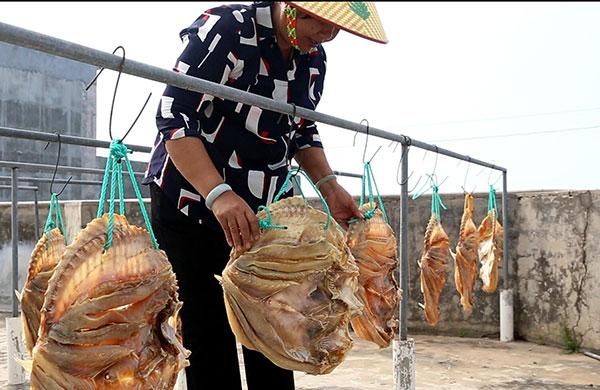 农民话农产品——儋州红鱼