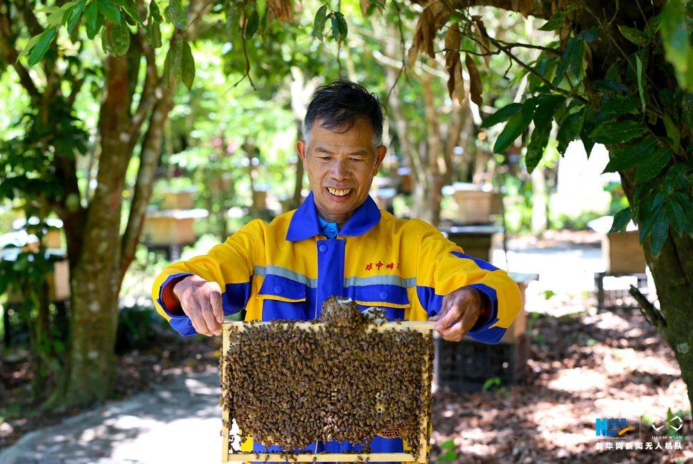 """航拍""""海南省最美蜂農""""的甜蜜生活"""