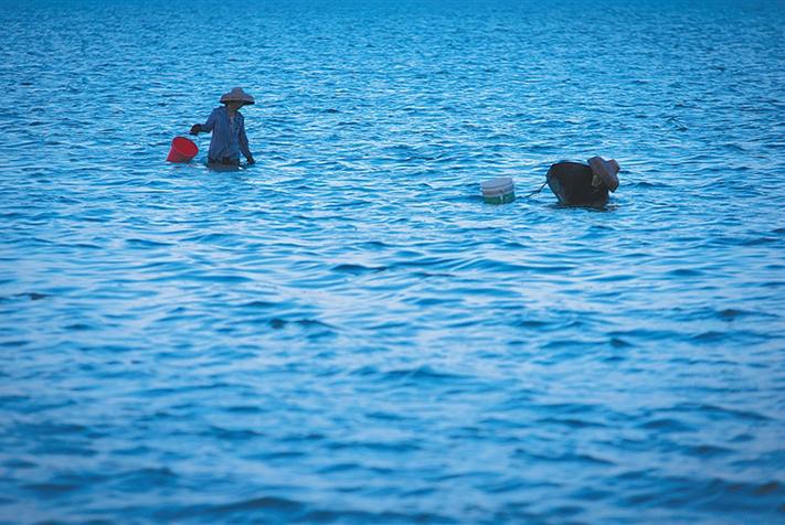 琼东渔港:东岸明珠各不相同