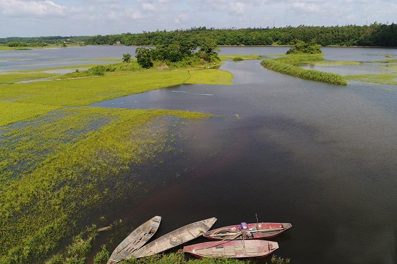 航拍海南新旧沟湿地 草色青青生态美