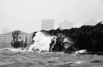 """""""贝碧嘉""""昨夜在广东雷州沿海登陆 今日海南强风雨"""