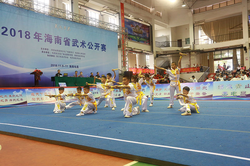 2018年海南省武术公开赛圆满落幕