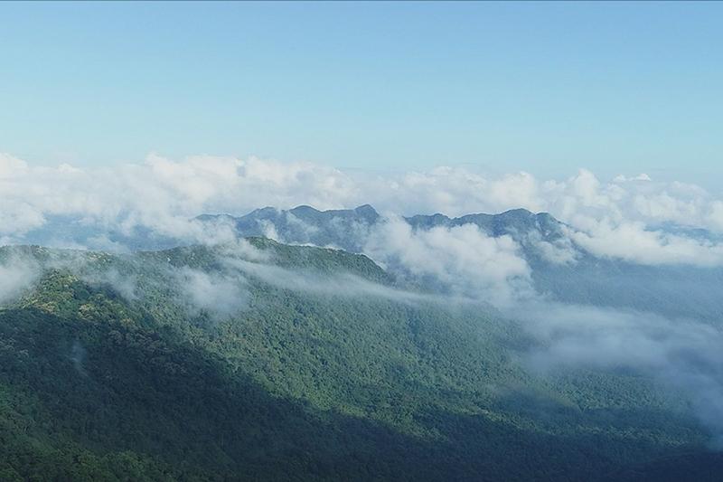 海南鸚哥嶺——雨林秘境 秀美風景