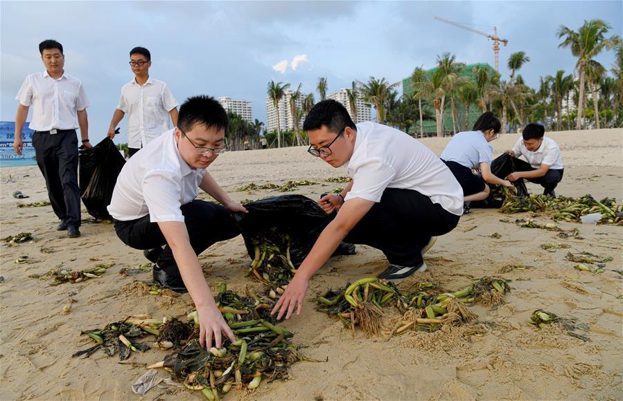 海南樂東:清理海灘垃圾 保護海洋環境