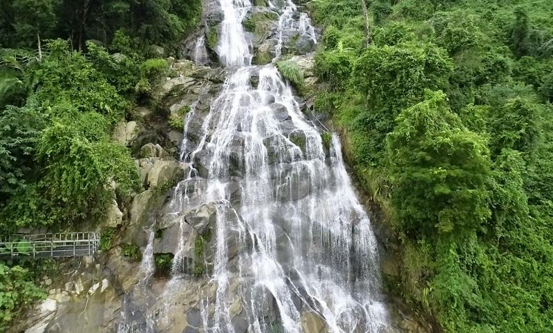 飛瀑百花嶺 熱帶雨林千姿百態