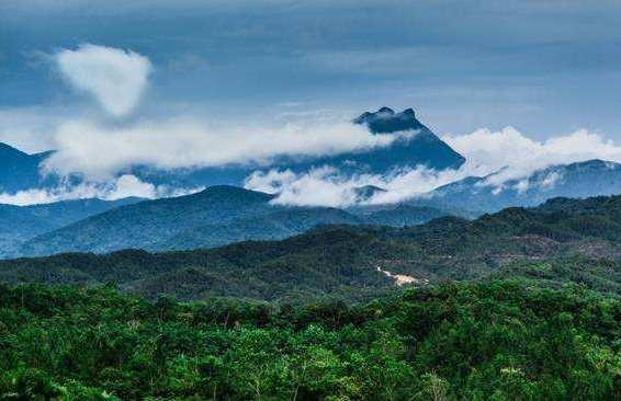 海南大学将联合琼中建热带雨林国家公园研究院
