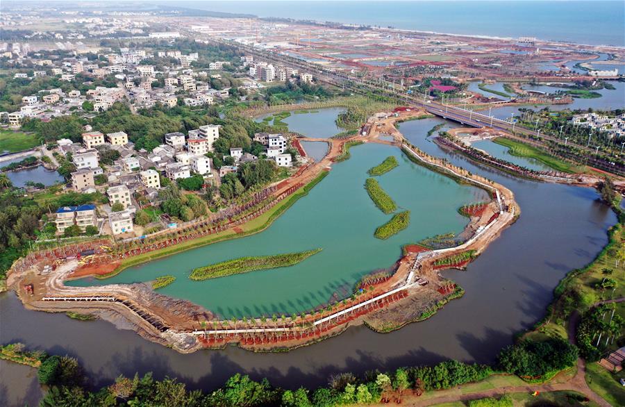 海口江東新區生態修復