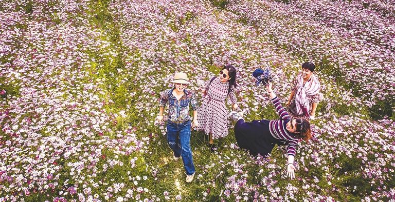 春日賞花正當時