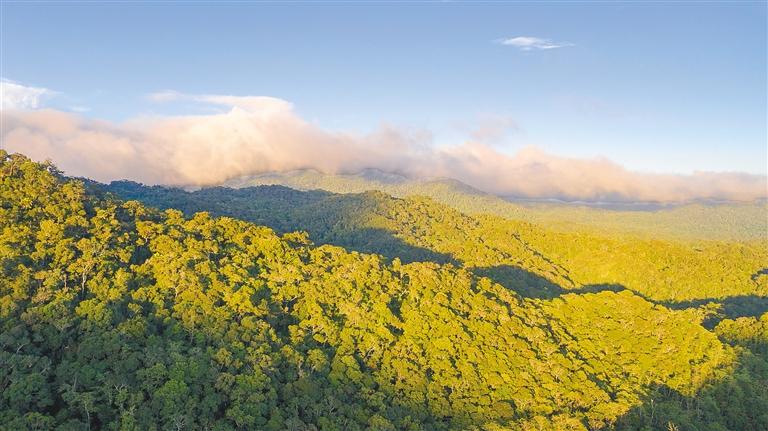 海南热带雨林国家公园体制试点区GEP总值超2000亿元